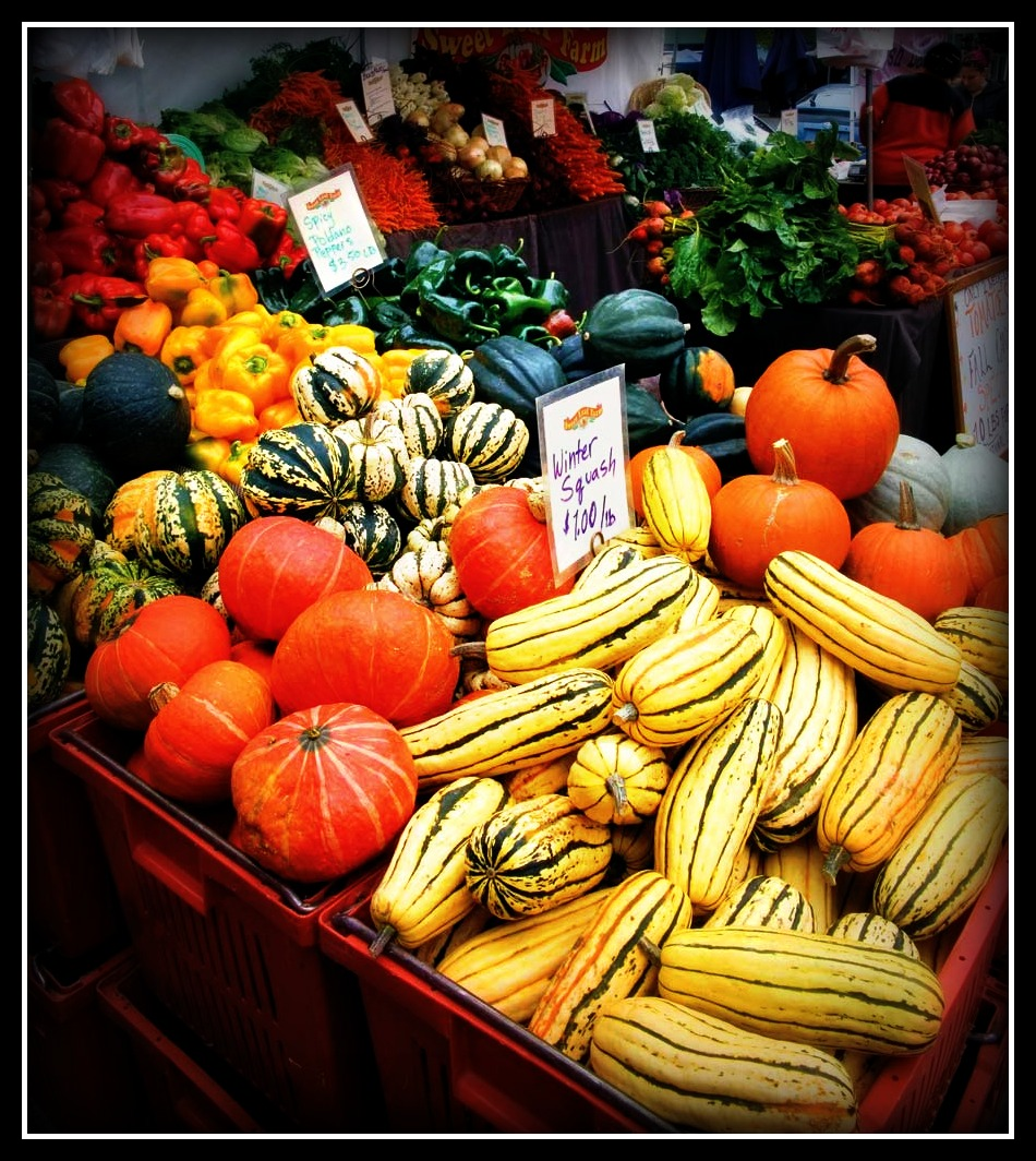 Westfield_Winter_Farmers_Market