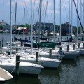 Cruising, Sailing, and Boating in Annapolis on the Bay and Severn River