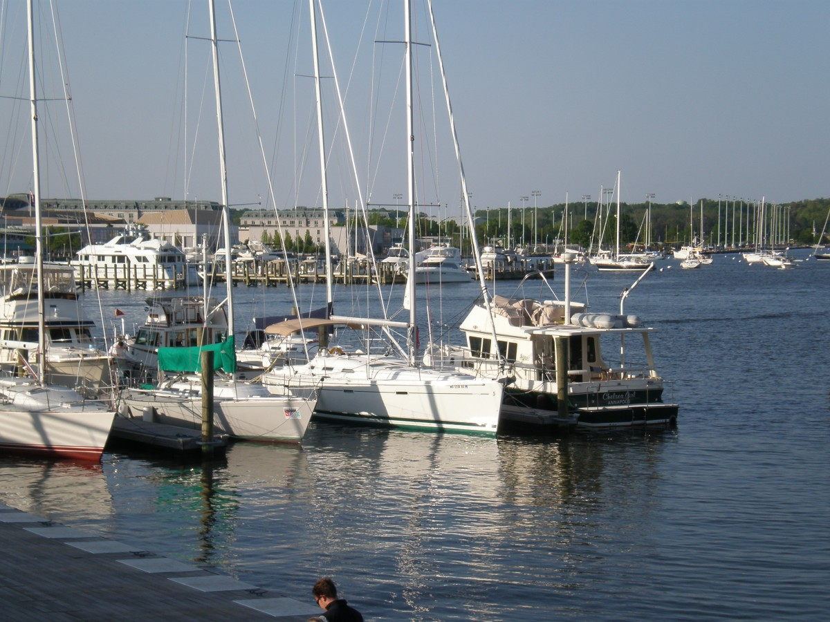 The Annapolis waterfront is filled with boats and activity