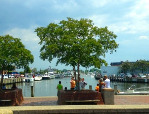 Annapolis City Dock named to list of America's 11 most endangered historic places