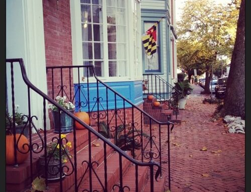 This Week in Annapolis: Changing seasons beckon fall festivals 🍂