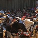 Maryland Rennaissance Fair 2015