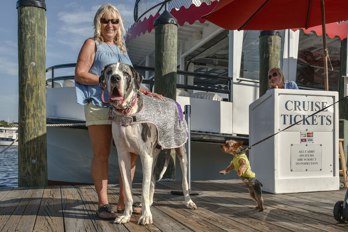 4th Annual Dog Days of Summer Cruise to Benefit Anne Arundel County SPCA