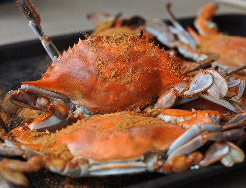 Maryland Seafood Festival turns 50