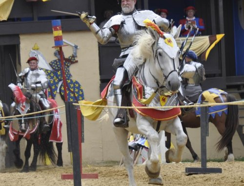 Let's travel back in time: The 2018 Renaissance Festival is coming up!