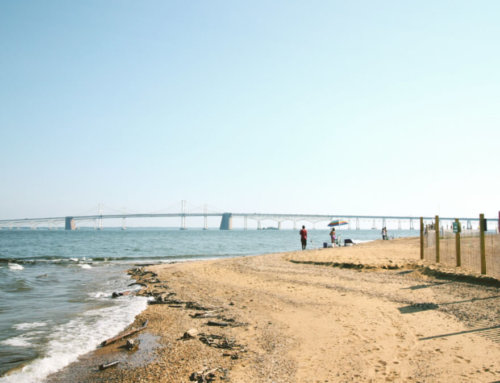 Annapolis in September: From the beach to the brewery